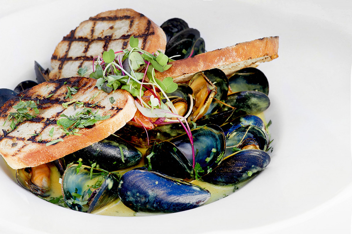 Food lifestyle photo of a plate of mussels in broth served with grilled bread and microgreens