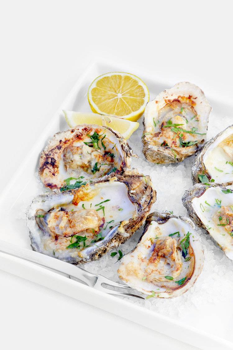 Beautifully plated oysters on a half shell on a square white plate