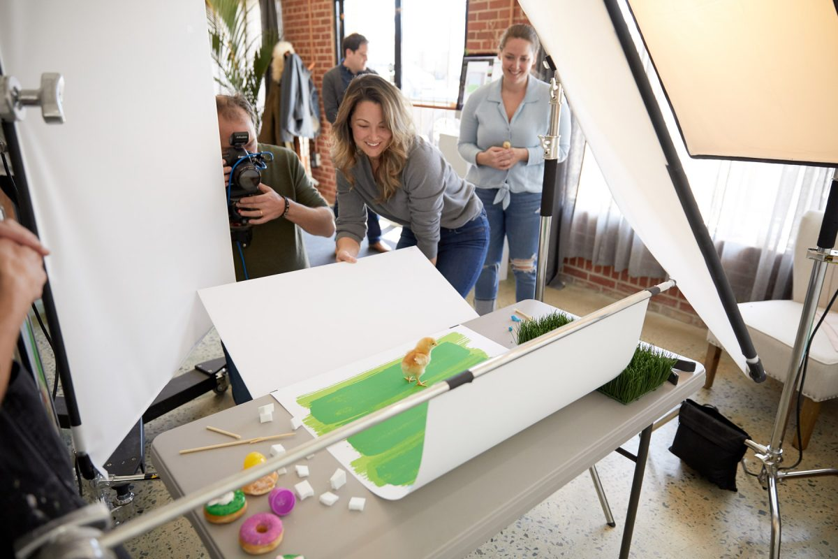 Salt Paper Studio commercial photography crew working on a photo shoot with a baby chick on a green background