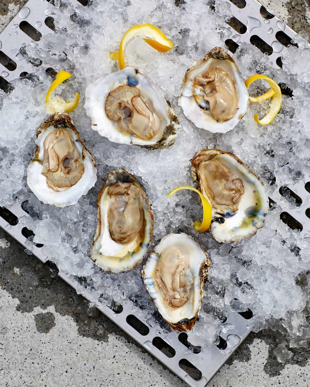 Lifestyle food photography of half-shell oysters on a bed of ice